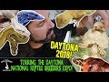 TOURING THE DAYTONA NATIONAL REPTILE BREEDERS EXPO! (August 2018)