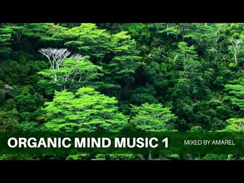 Organic Mind Music 1 by Amarel (Ambient)