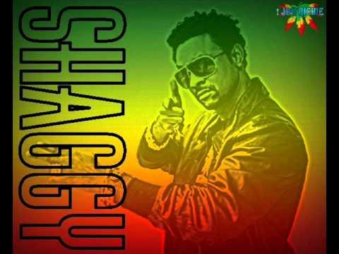 .Shaggy - Reggae Vibes