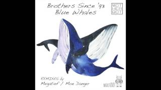 Brothers Since '93 - Blue Whales (Moe Danger Remix)