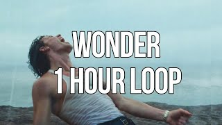 Wonder - Shawn Mendes (1 HOUR LOOP)