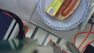 RIT Hotdog 2010