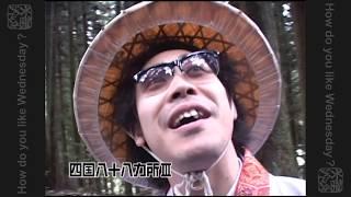 武藤有砂 - 鳥の旅