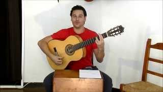 How To Play Flamenco - Singing Alegrías