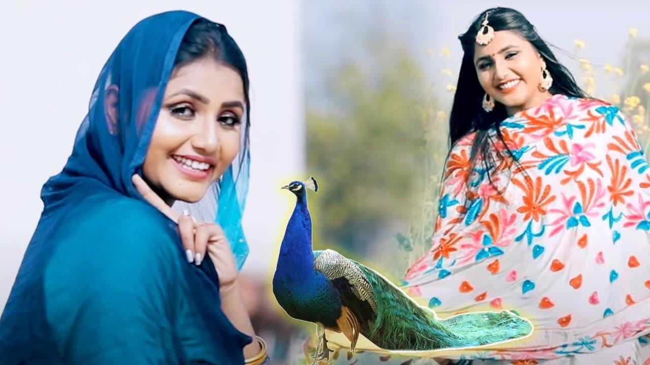रिलीज होते ही तहलका मचा दिया Pooja Punjaban का ये गाना - Jaji King - Sapne Me Dekhi Hoor - New Song