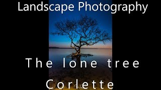 Landscape Photography - Long Exposure at The Lone Tree - Corlette