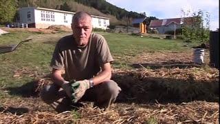 No dig garden construction - workshop
