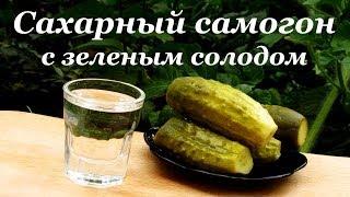 Сахарный самогон, рецепт браги с зеленым солодом