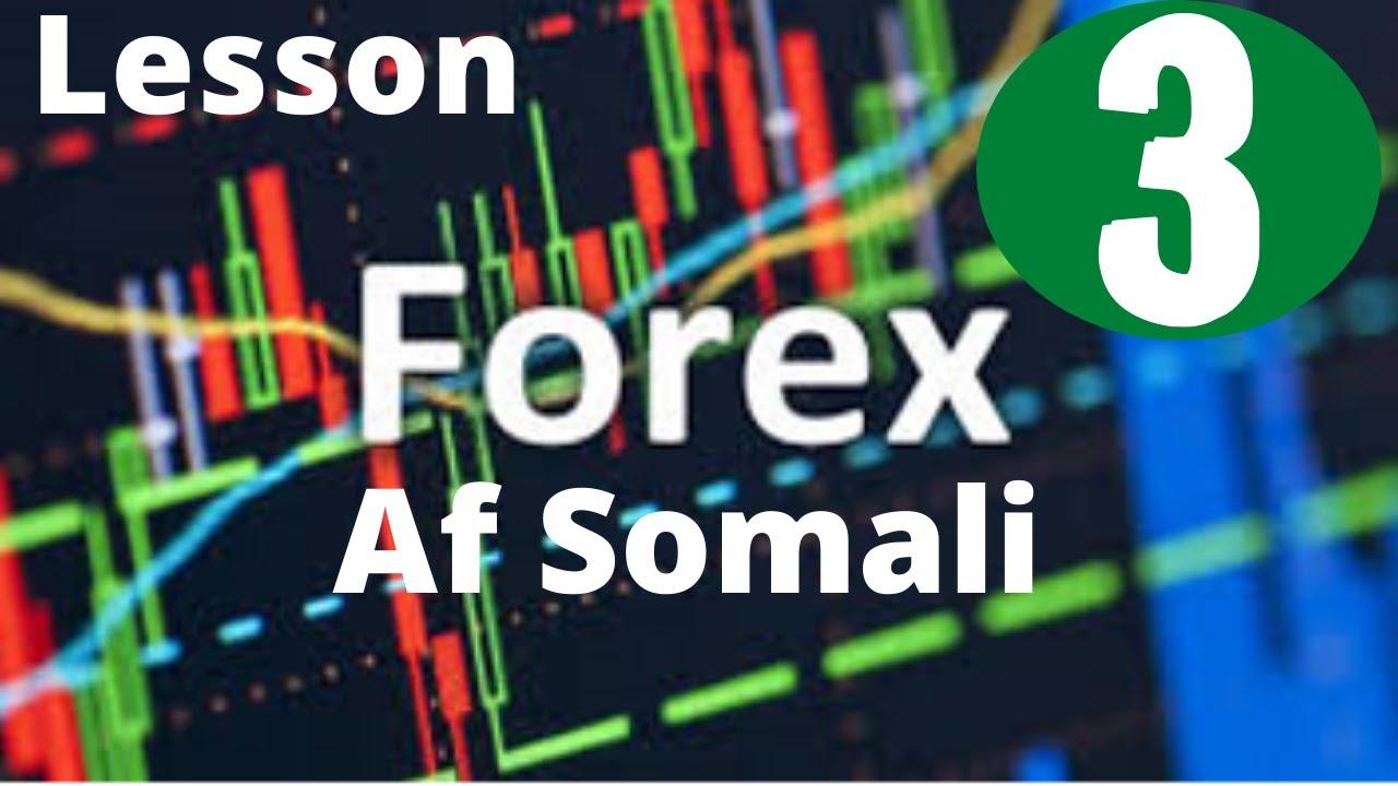 Forex Trading Day - Video Tutorial ➕ Video Tutorial ? AvaTrade