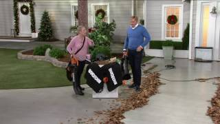 Worx Trivac Blower Vacuum & Mulcher with 2 Leaf Bags on QVC
