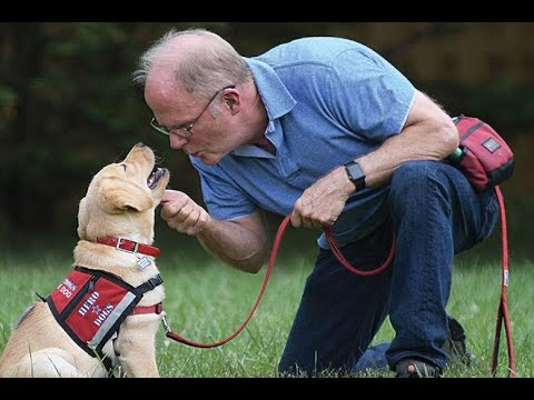 Veteran Helps Puppy Become a Hero