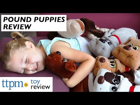 Pound Puppies From Basic Fun!