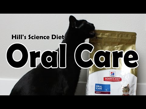 Hill's Science Diet Adult Oral Care | Dry Food #1