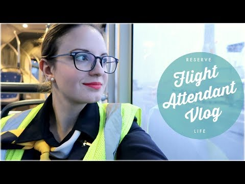 Reserve Life + Trip to SWITZERLAND and ROMANIA I Flight Attendant Life I Vlog 38