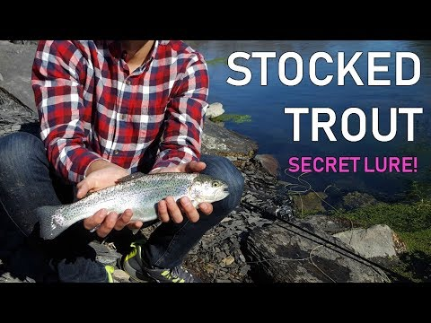 Fly Fishing for Stocked Trout - SECRET PATTERN?!?