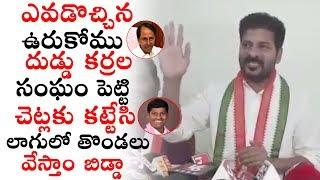 T Congress Revanth Reddy Sensational Comments on Telangana CM KCR   T Congress Updates   PQ