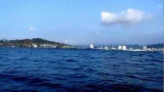 海驢島&波濤根