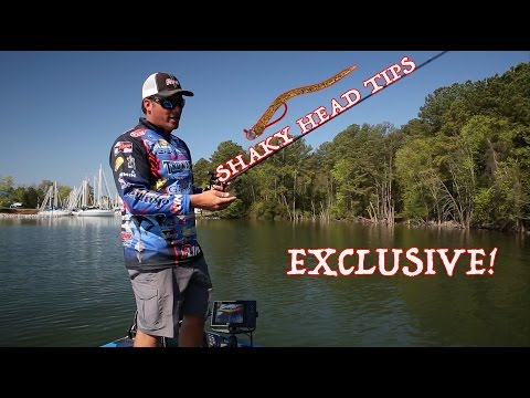 How To Fish A Shaky Head Worm 101 - Picking The Right Line, Color, Size And Rod