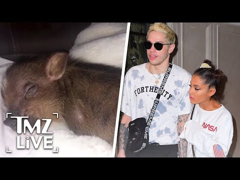 Ariana Grande Returns Engagement Ring, Keeps Pet Pig | TMZ Live