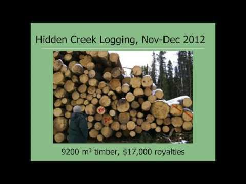 Hidden Creek:  A Case Study for Headwaters Management