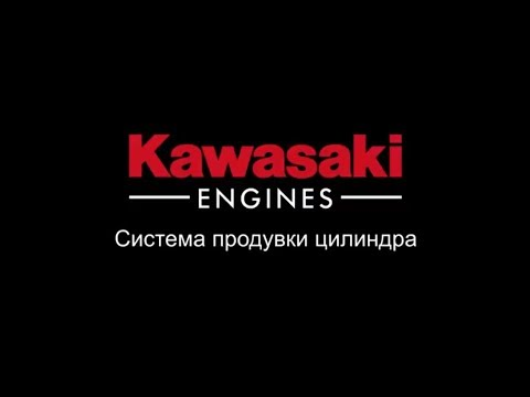 Кавасаки многоуровневая система очистки