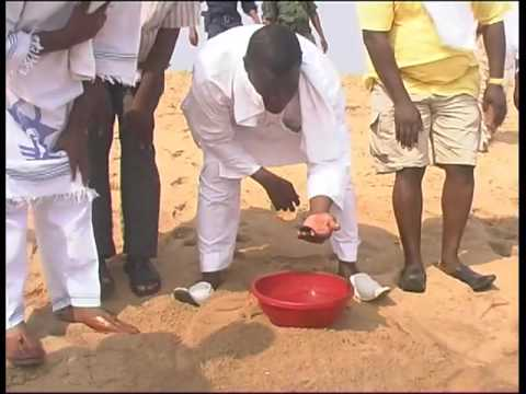Photostory: Atlantic Sea Turtle Conservation (Benin)
