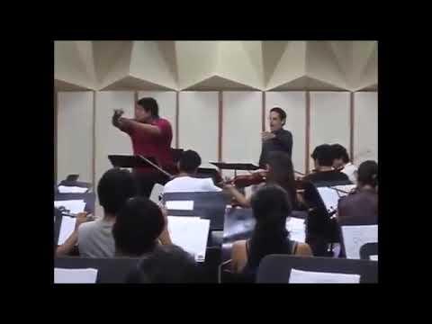 Mics love modern opera singers