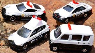 はたらくくるま トミカのパトカーを4つ開けてみるよ♪ 緊急車両 おもちゃ アニメ 幼児 子供向け動画 TOMICA TOY KIDS Vehicles Police Car thumbnail