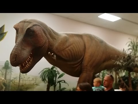 The Greensboro Science Center; Science Museum and Zoological Park   THROWBACK