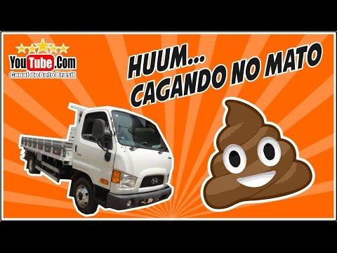 CAMINHONEIRO OLHA QUE CAGADA HD HYUNDAI CAMINHO 3 4
