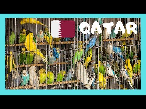 QATAR, The BIRD MARKET of famous  SOUQ WAQIF (Doha)
