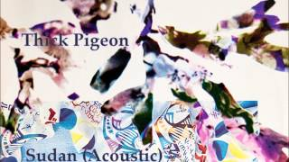 Thick Pigeon - Sudan (Acoustic)