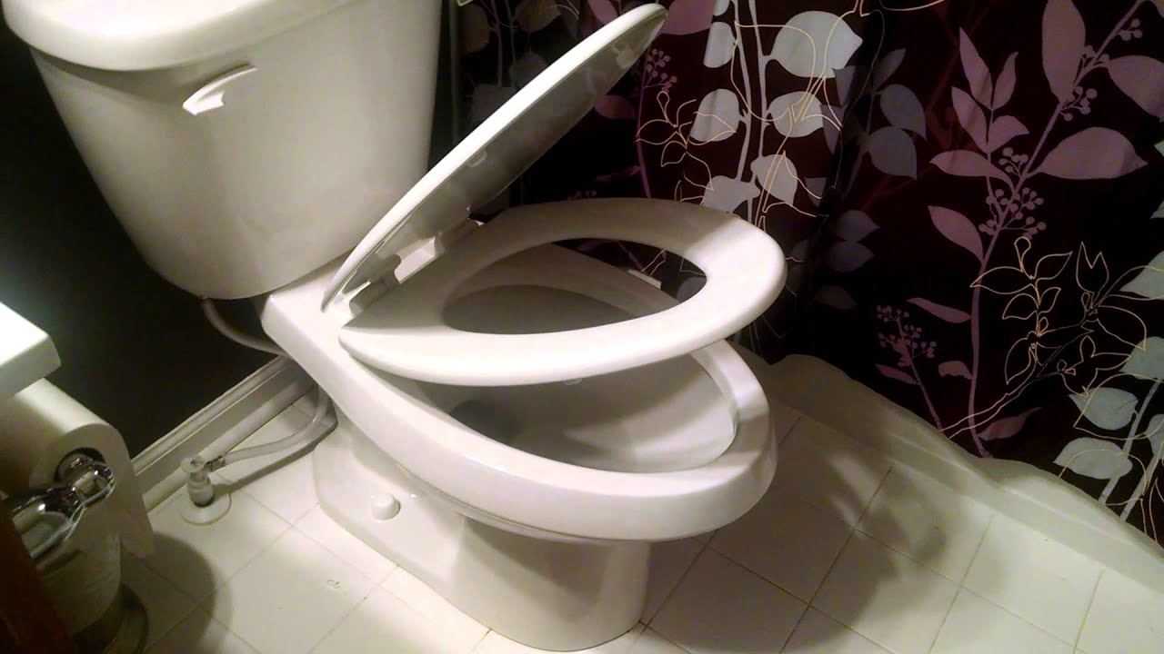 Glamorous bemis white toilet seat contemporary best inspiration bemis slow close elongated adjustable toilet seat in white youtube nvjuhfo Image collections