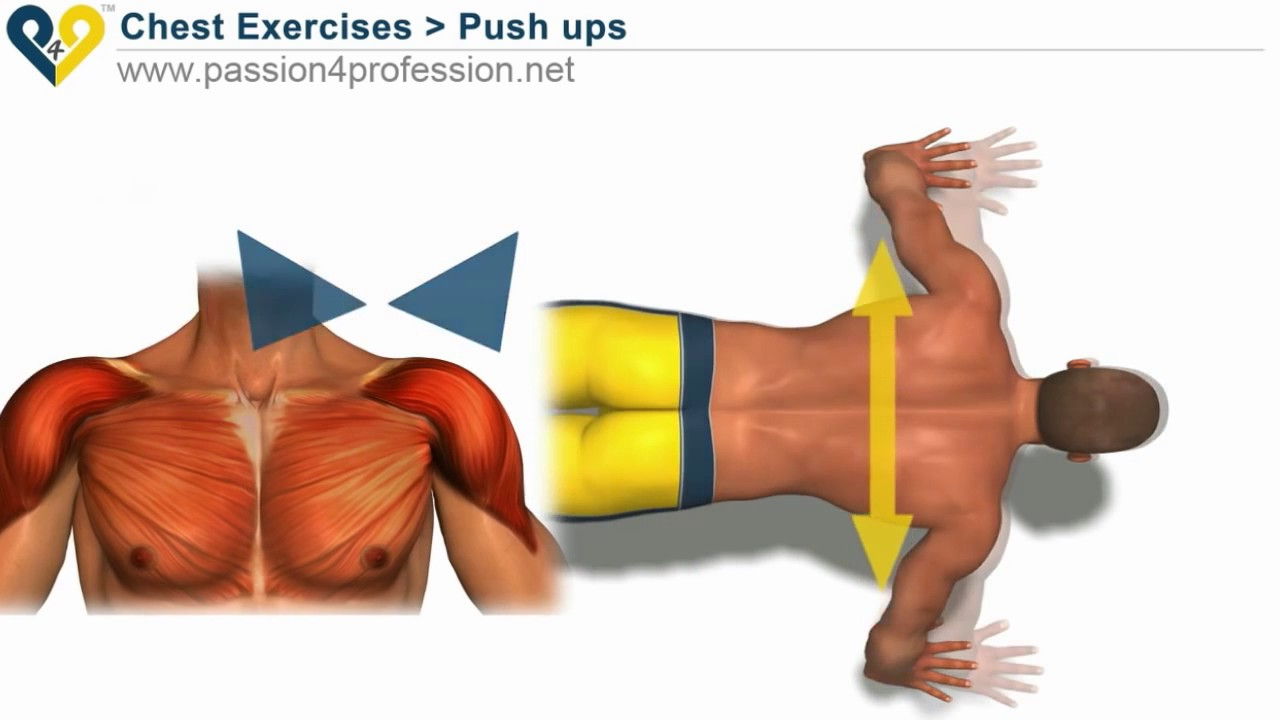 How to Do a Push Up Correctly - YouTube