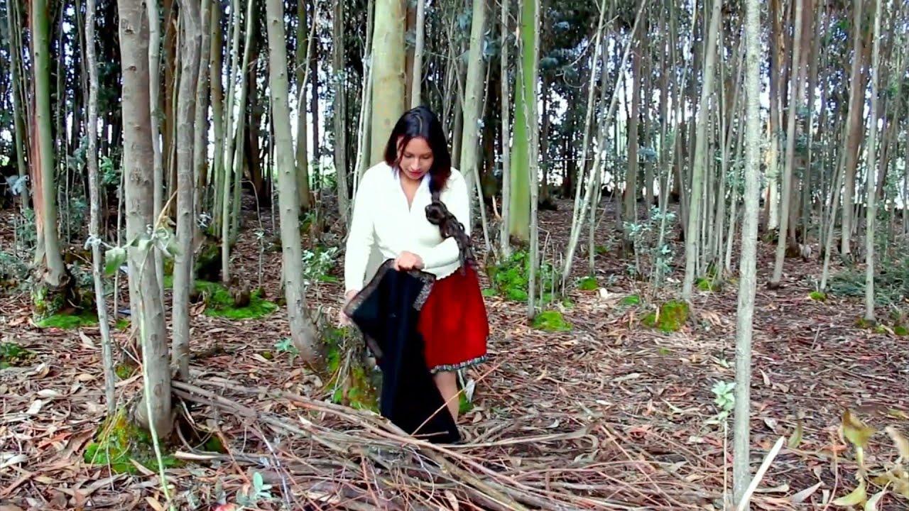 Joven recogiendo leña en el bosque -  Amazing primitive survival!!