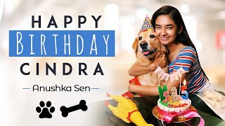 My Cindra's Birthday Pawty! | Celebrating Cindra's Birthday | Anushka Sen