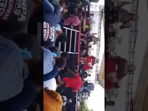 LADIES ROYAL - PIKER KERI Tawuran Menegangkan ( Brakas Bersatu )
