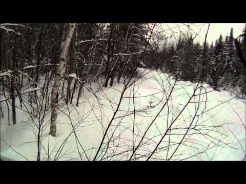 Skandic  WT 2011 600 (Hors-piste)