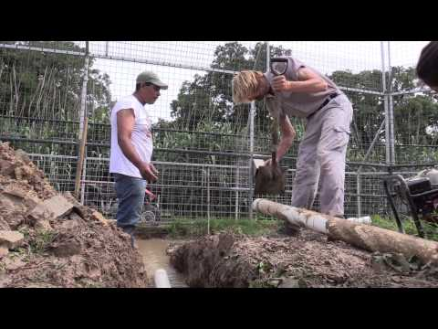 Park Floods Force Trench Dig Out At The GW Zoo (Joe Exotic TV)