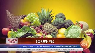 What's New: Ethiopia Somali Region | Healthy Diet | Friendship