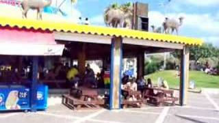 Camel Bar Dado Beach Haifa Israel