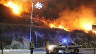 Kebakaran Hutan di Israel Paksa Ribuan Orang Mengungsi