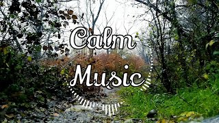Download Relaxing Music, Mp3 Juice, Tubidy, Mp3 to YouTube, Calm Music, Mp3, AMBITION OF THE HEAVEN🌙