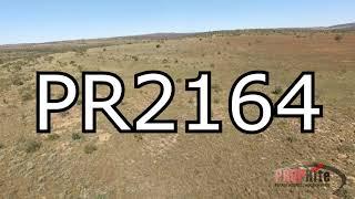 PR2164   171 Ha Undeveloped Game Farm Naboomspruit.