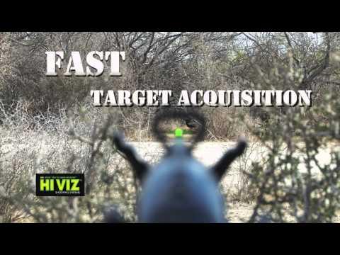 Texas Quail Hunting - 1505