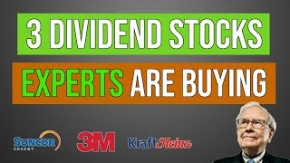 Top 3 Dividend Stocks Experts Are Buying (2019)