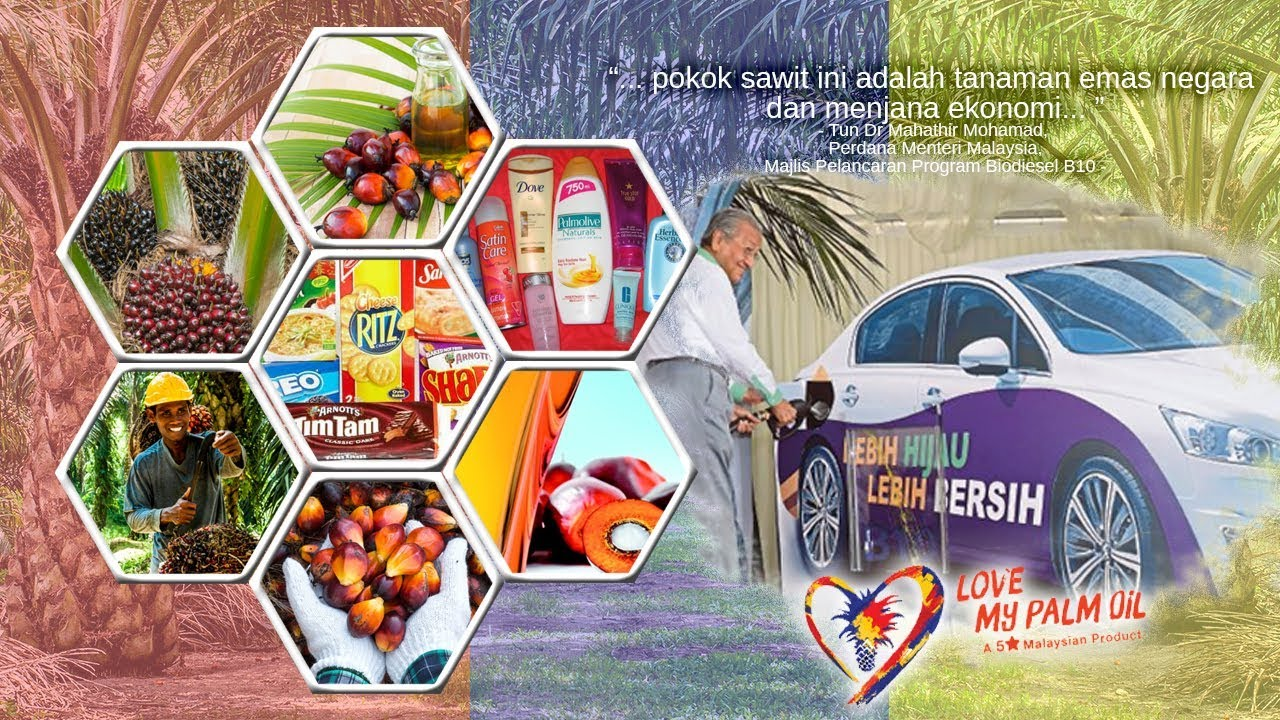 Love My Palm Oil Campaign - YouTube