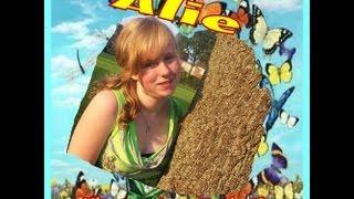 Arie - Vlinders in mijn buik (Heavy Metal versie)
