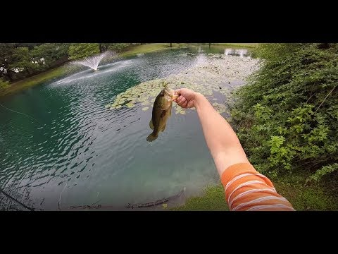 Fishing the blue pond in Round Rock, Texas and caught a new personal best!