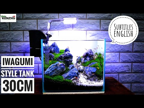 #168-membuat-aquascape-tema-iwagumi-mini